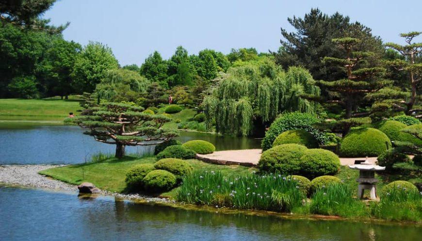 vestuviu fotosesija botanikos sode
